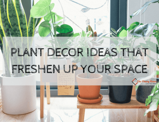 plant decor ideas