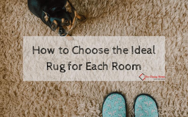 choose ideal rug main banner